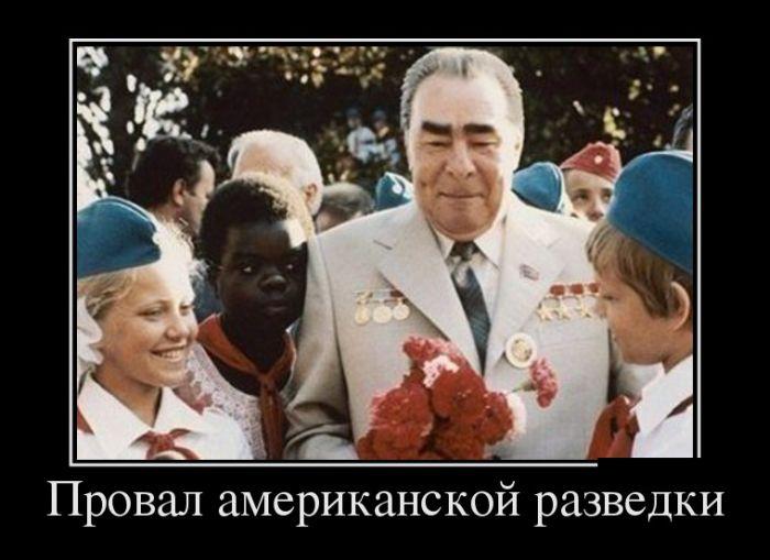 http://trinixy.ru/pics5/20150313/demotivatory_16.jpg