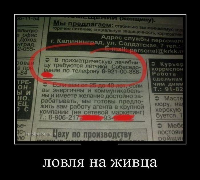 http://trinixy.ru/pics5/20150313/demotivatory_21.jpg