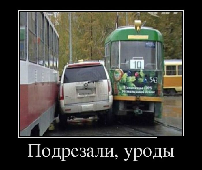 http://trinixy.ru/pics5/20150313/demotivatory_29.jpg