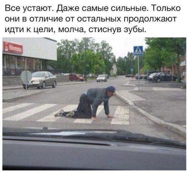 http://trinixy.ru/pics5/20150313/podborka_52.jpg