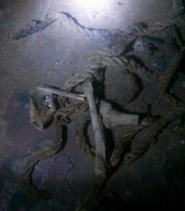 Исследование костей, найденных в подвале дома (4 фото)