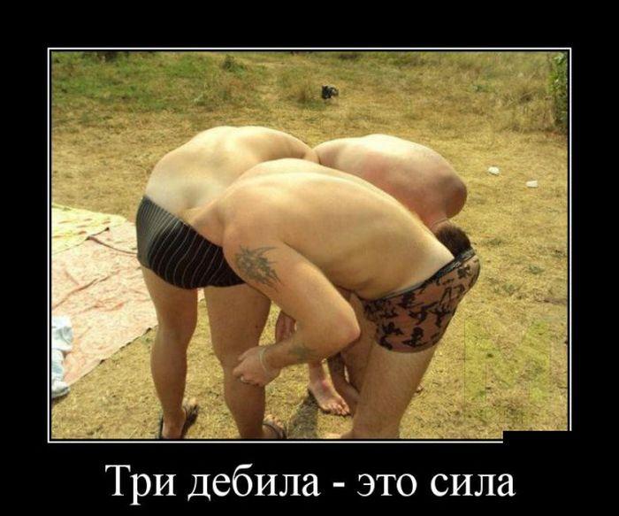 http://trinixy.ru/pics5/20150320/demotivatory_04.jpg