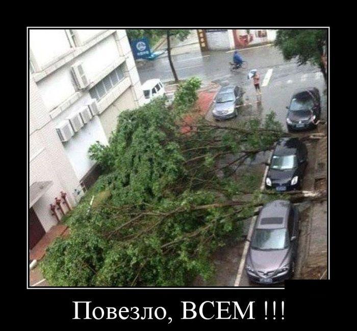 http://trinixy.ru/pics5/20150320/demotivatory_16.jpg