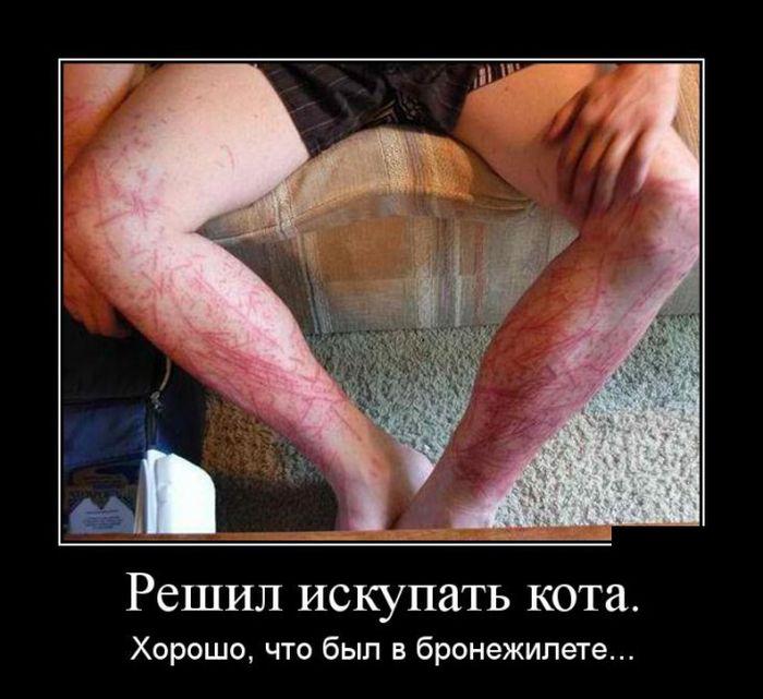 http://trinixy.ru/pics5/20150320/demotivatory_30.jpg