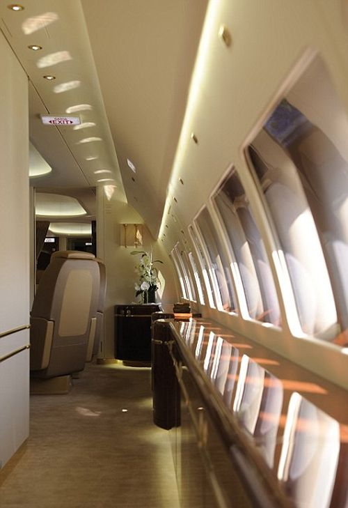 Принц Чарльз и его супруга Камилла арендовали роскошный Airbus A320 Head Of State за 250 000 фунтов стерлингов (10 фото)