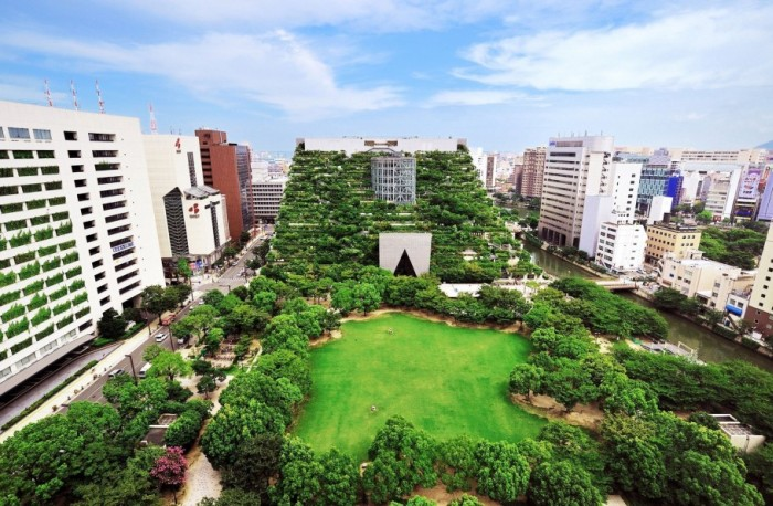 Во Франции владельцев недвижимости в коммерческой зоне обязали покрывать крыши растениями или солнечными панелями (4 фото)