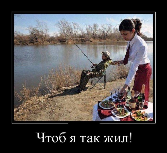 http://trinixy.ru/pics5/20150327/demotivatory_20.jpg