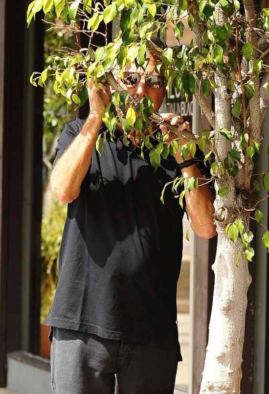 Дастин Хоффман продемонстрировал папарацци свое умение «играть в прятки» (5 фото)