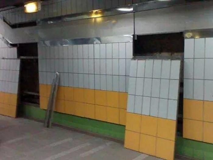 В стене каирского метро пять лет жил кот (6 фото)