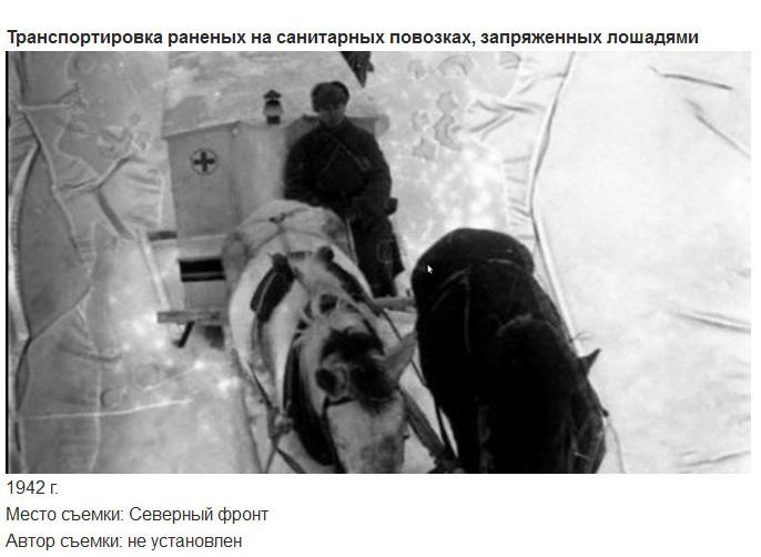 Медики на полях сражений ВОВ (14 фото)