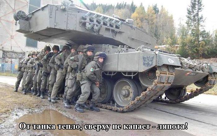 http://trinixy.ru/pics5/20150410/podborka_04.jpg