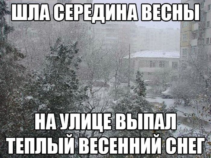 http://trinixy.ru/pics5/20150410/podborka_84.jpg