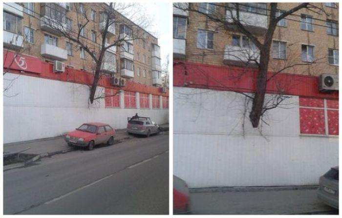 Фото, які можливо було зробити тільки в Росії.  Частина 3 (42 фото)