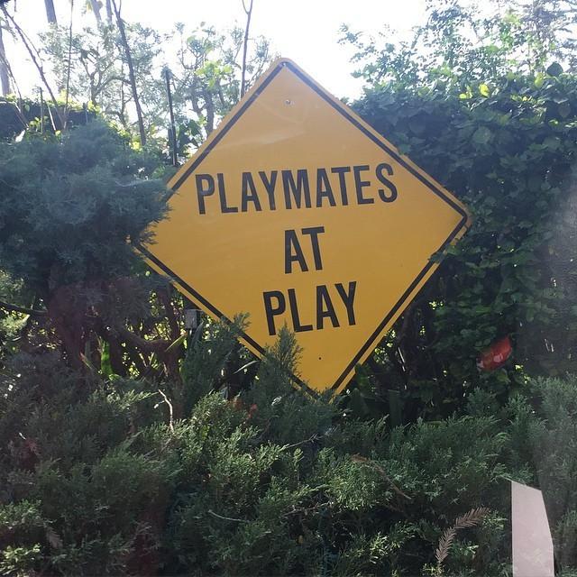 В честь 89-го дня рождения Хью Хефнера в особняке Playboy прошла тематическая вечеринка (32 фото)