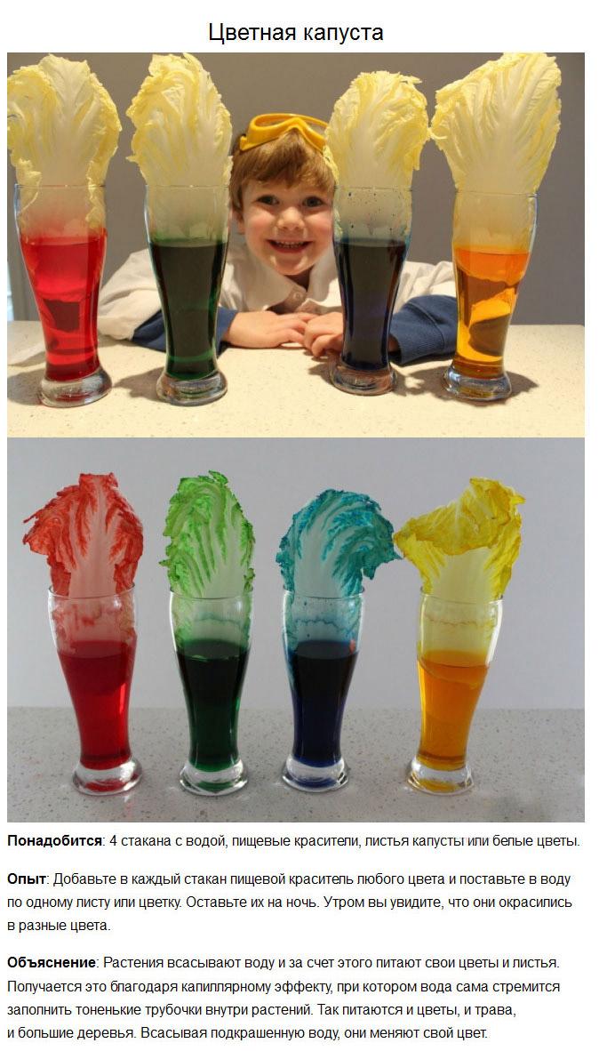 Простые опыты, которые понравятся вашему ребенку (5 фото)