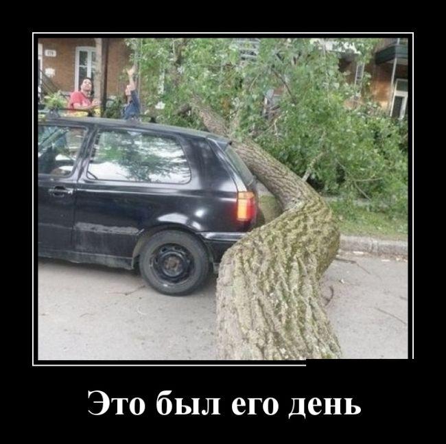 http://trinixy.ru/pics5/20150417/demotivatory_12.jpg