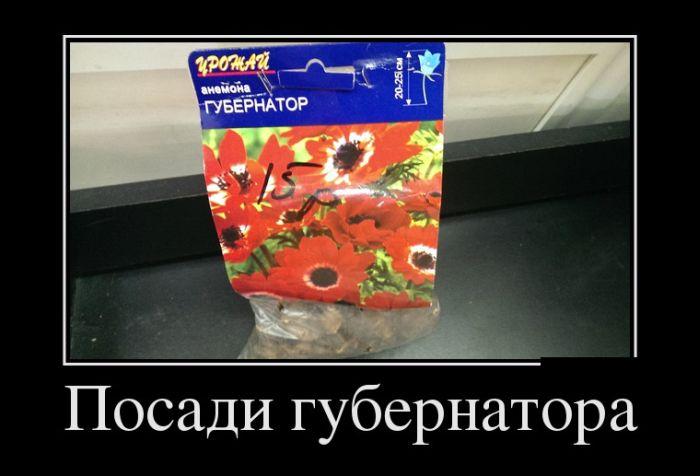 http://trinixy.ru/pics5/20150417/demotivatory_13.jpg