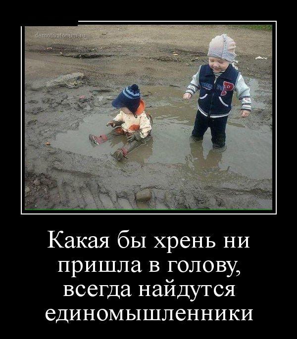 http://trinixy.ru/pics5/20150417/demotivatory_27.jpg