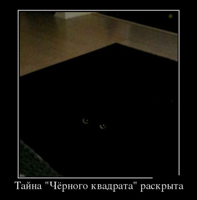 http://trinixy.ru/pics5/20150417/demotivatory_30.jpg