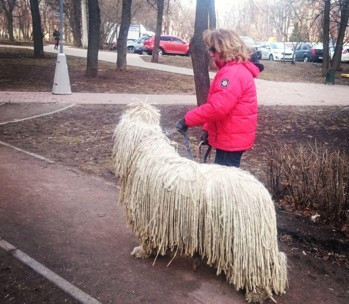 http://trinixy.ru/pics5/20150417/podborka_44.jpg