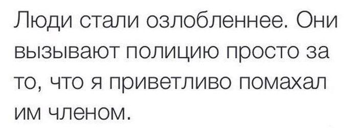 http://trinixy.ru/pics5/20150417/podborka_70.jpg