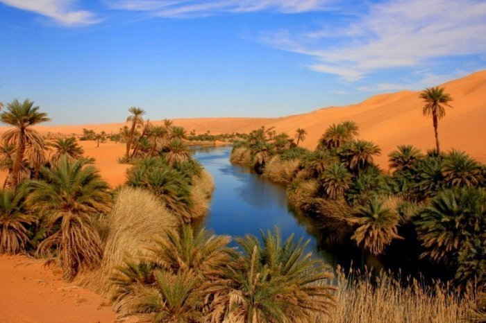 Оазис Убари в Ливии (10 фото)