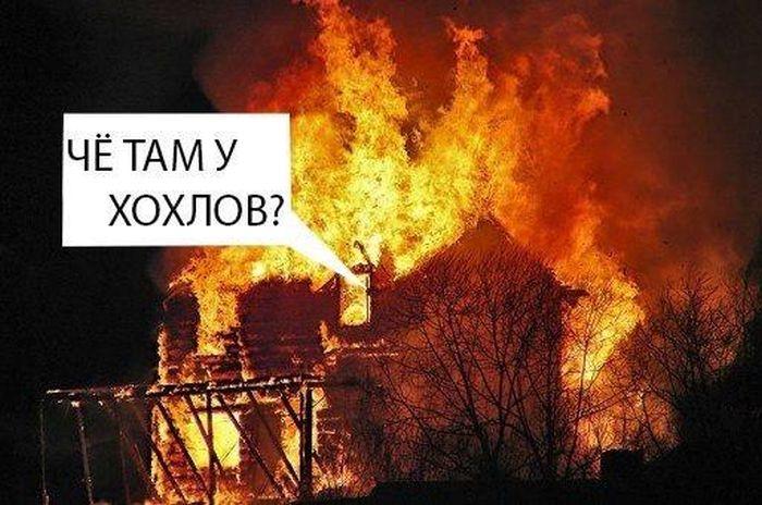 http://cdn.trinixy.ru/pics5/20150421/chto_tam_u_hohlov_05.jpg