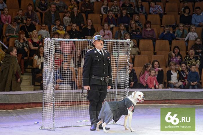 Цирк Екатеринбурга представил праздничную программу «Салют победы» (11 фото)