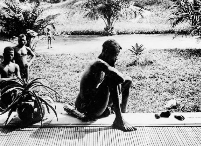 Каучуковый геноцид коренного населения Конго (11 фото)