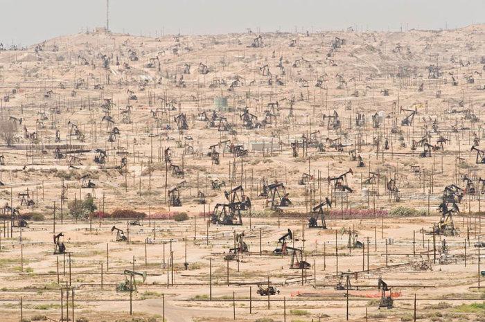 К чему приводит загрязнение окружающей среды (30 фото)