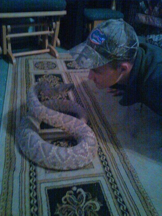 Не целуйте ядовитых змей (9 фото)