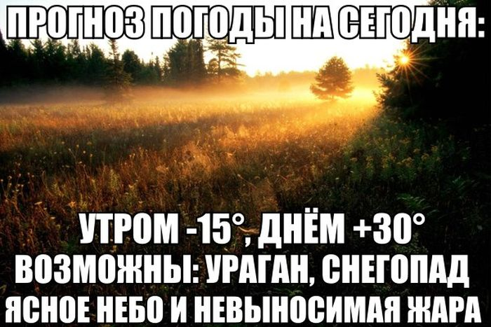 http://trinixy.ru/pics5/20150424/podborka_01.jpg