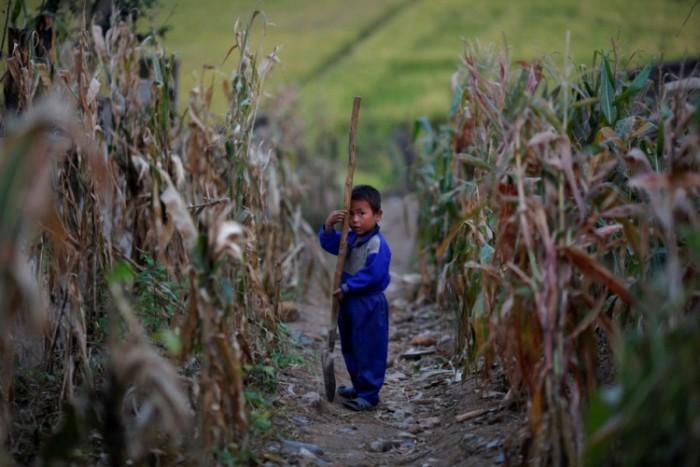 О жизни детей в КНДР (26 фото)