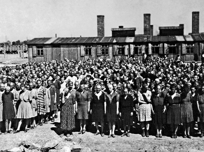 Воспоминания узников Освенцима (14 фото)