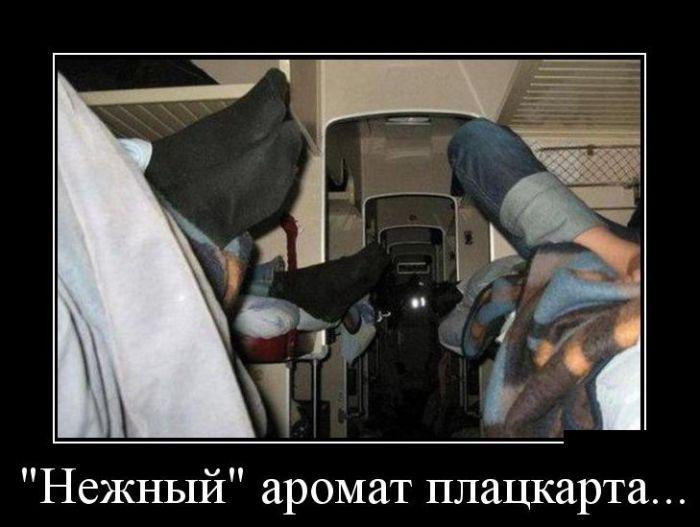 http://trinixy.ru/pics5/20150430/demotivatory_30.jpg