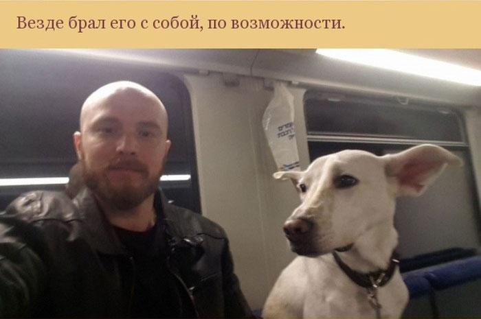 Как пес отплатил своему хозяину за спасение (7 фото)