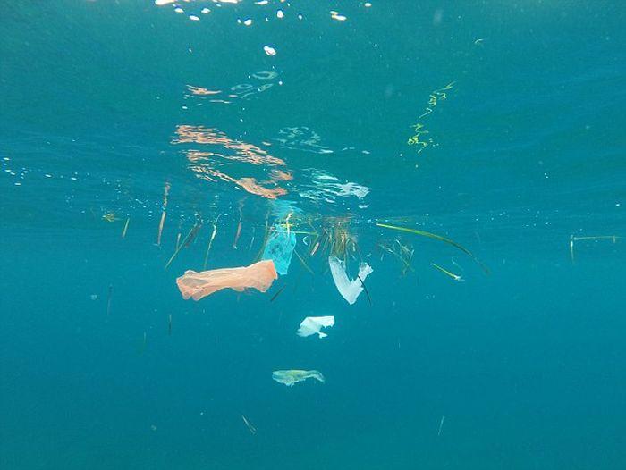 Что скрывается на дне Средиземного моря у побережья Канн (4 фото + видео)