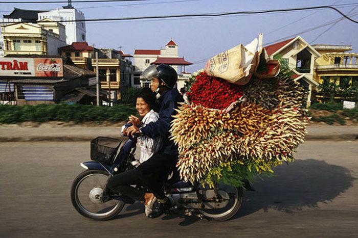Как не стоит использовать мопеды и мотоциклы (27 фото)