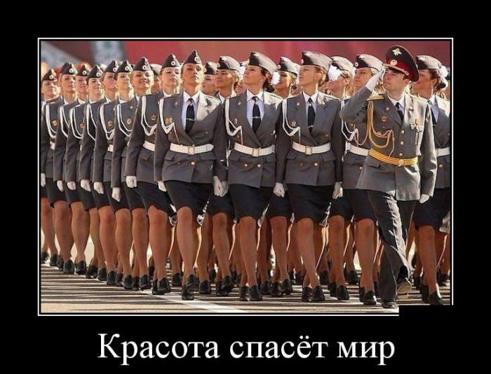 http://trinixy.ru/pics5/20150522/demotivatory_05.jpg