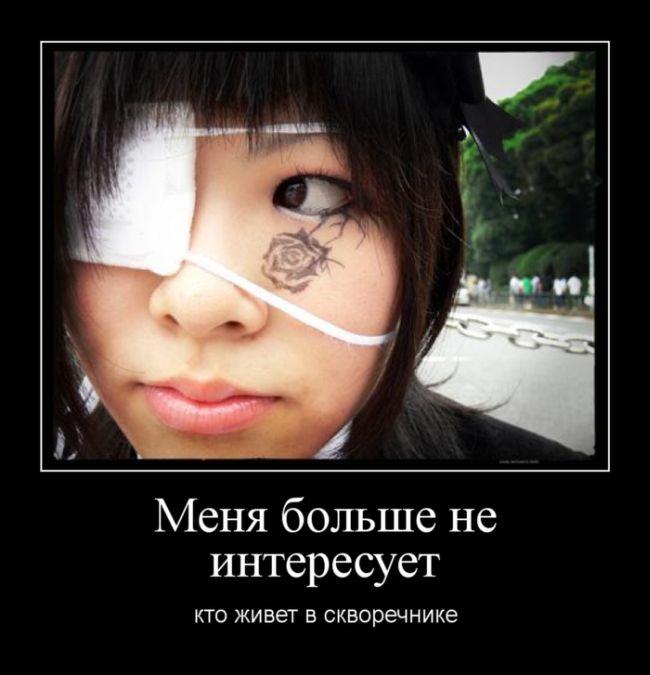 http://trinixy.ru/pics5/20150522/demotivatory_13.jpg