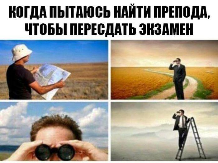 Прикольные картинки (101 фото)