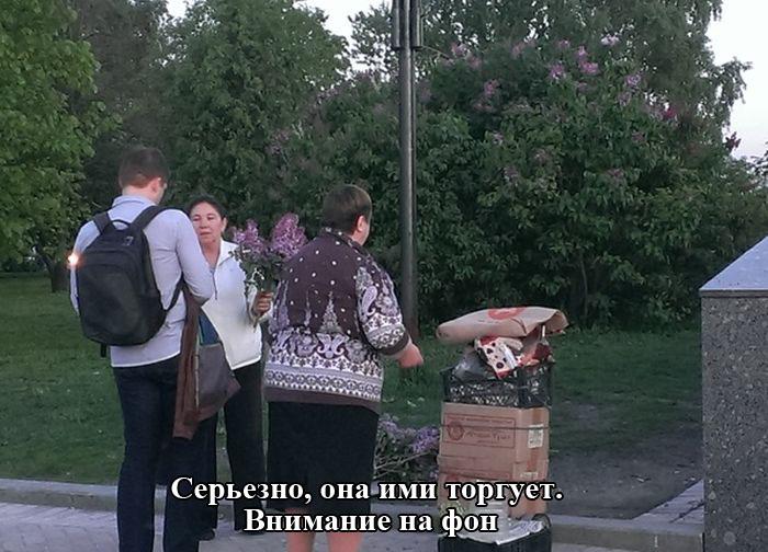 http://trinixy.ru/pics5/20150522/podborka_49.jpg