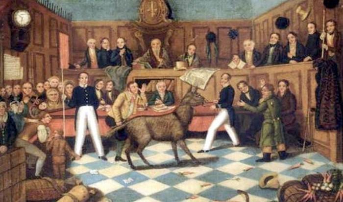 Невероятные исторические факты (21 фото)
