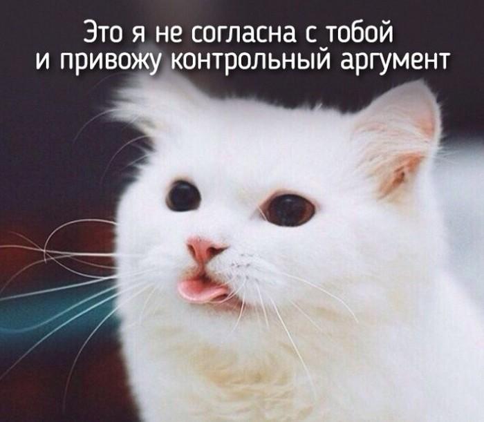 Когда люди становятся похожими на животных (20 фото)