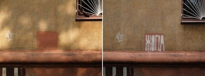 Краска против истины (9 фото)