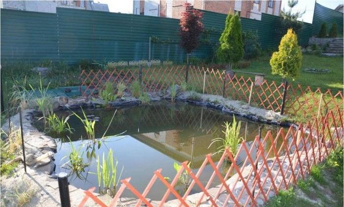 Декоративный пруд во дворе дома (17 фото)