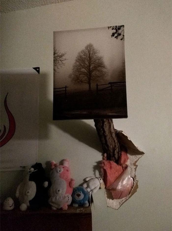 Дерво рухнуло на дом (5 фото)