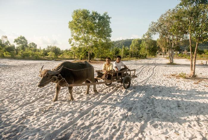 Австралийская домохозяйка превратила заброшенный остров в Камбодже в люксовый курорт (15 фото)