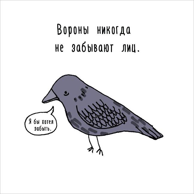 Забавное, интересное, шокирующее - Страница 6 Fakti_o_jivotnih_06