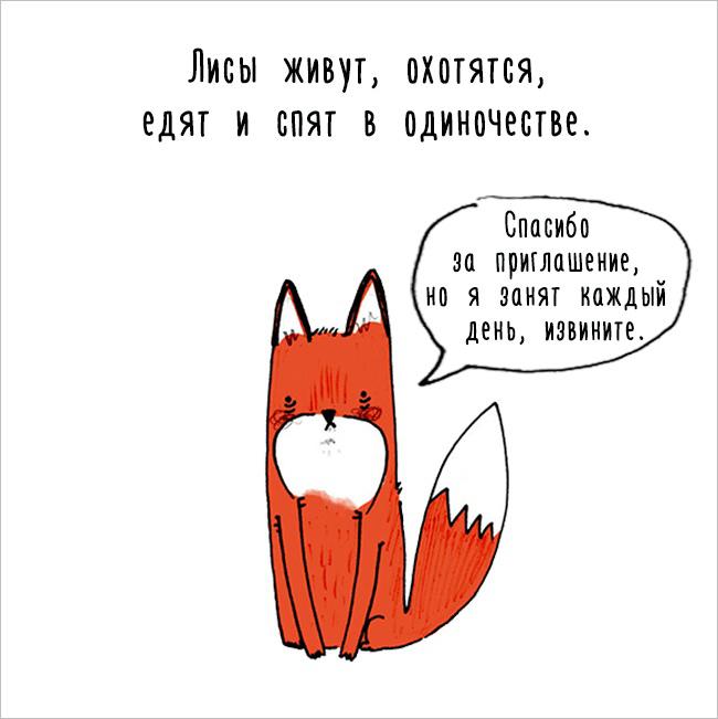 Интересные факты о животных в забавных комиксах (17 картинок)